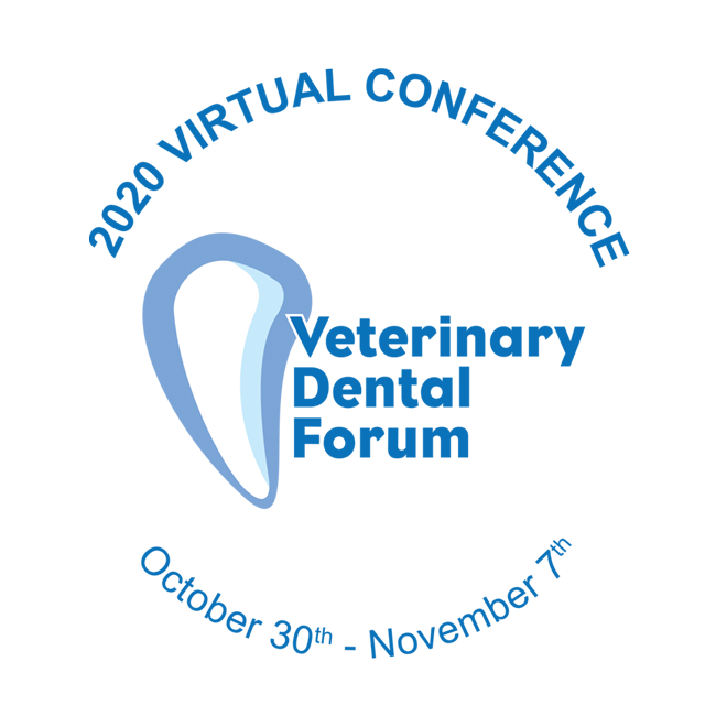 Virtual Forum Logo